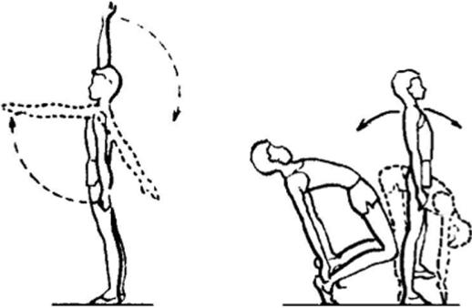Упражнения по физической культуре на плечевой сустав как снять острую боль в плечевом суставе