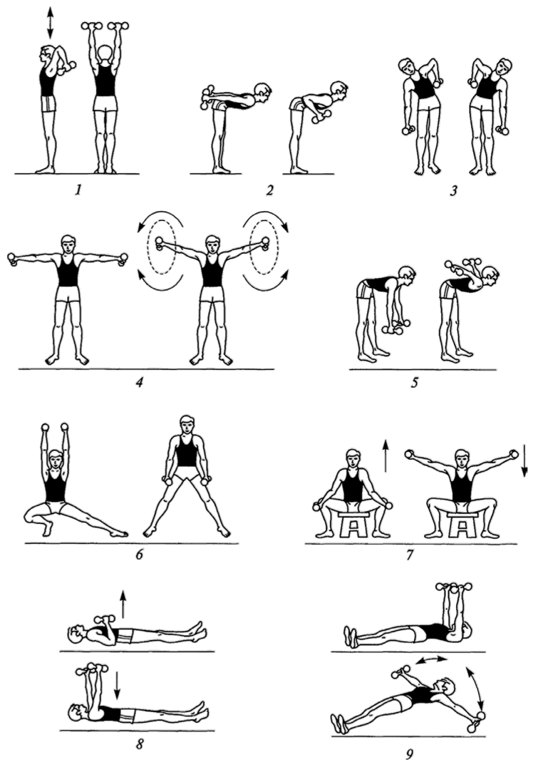 упражнения с гантелями дома в картинках просеять